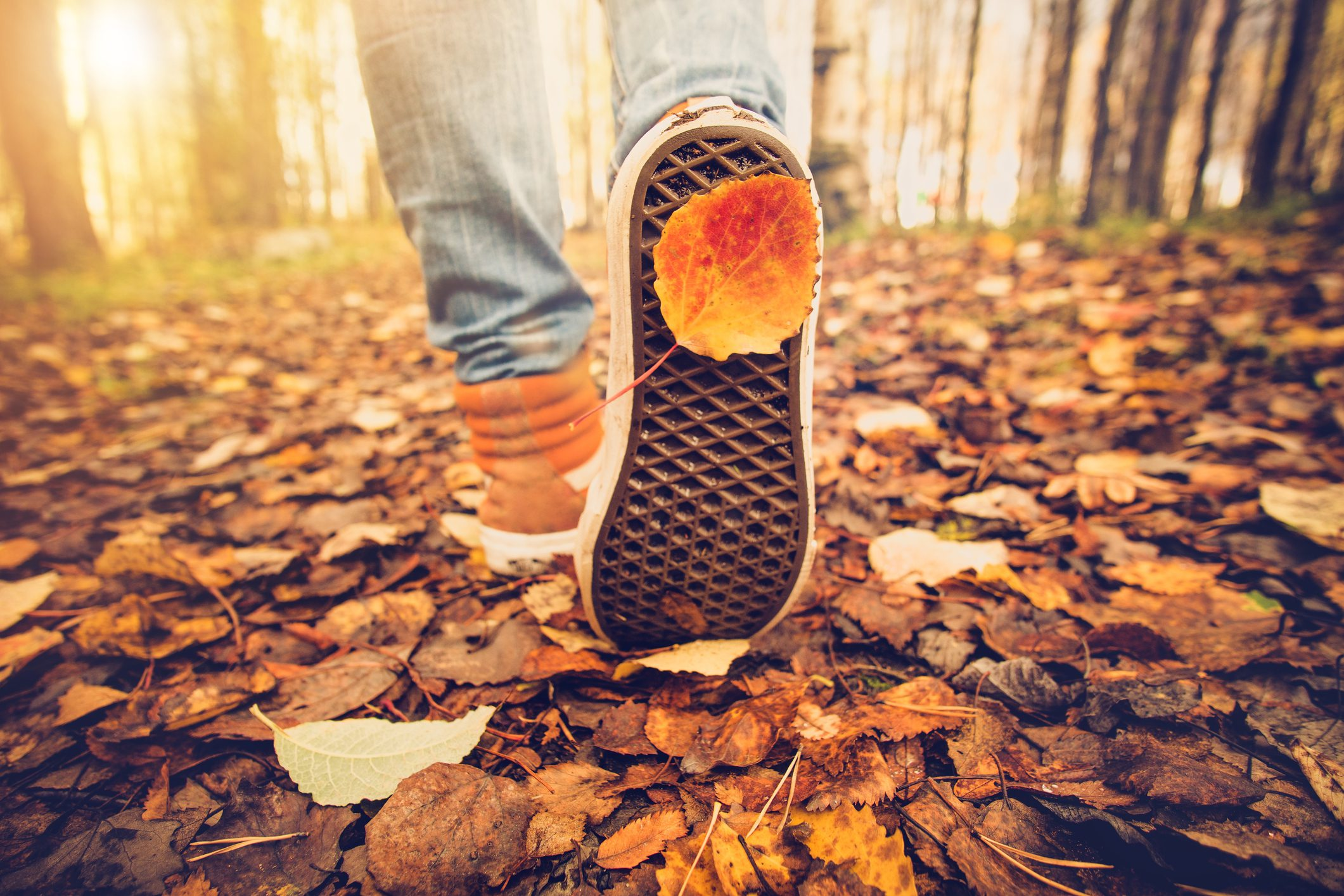 Ways to boost your health this fall